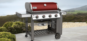 Can You Convert Natural Gas Grill to Propane